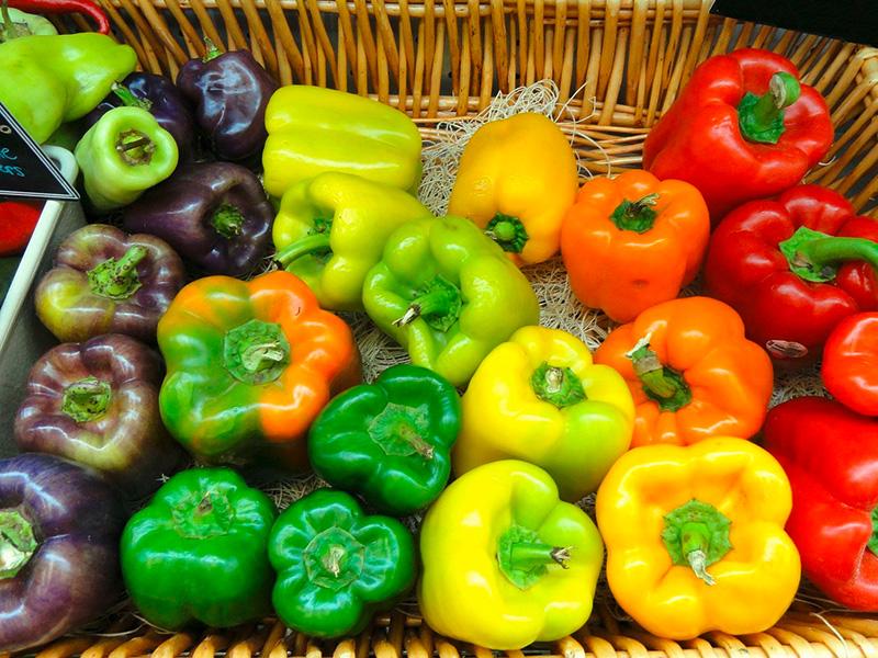 frisches Gemüse Shop Bergfreund Fiescheralp